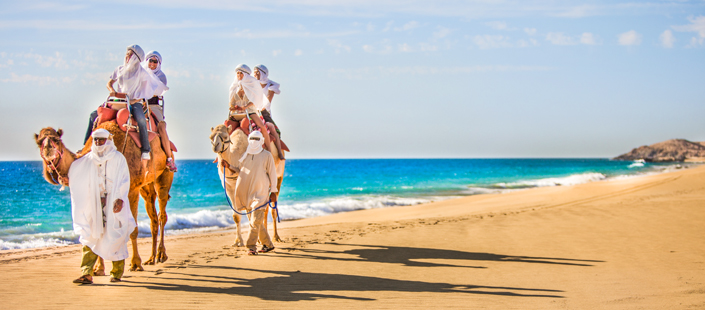 Outback Tour & Camel Safari in Cabos
