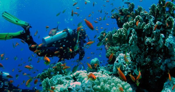 Discover Cancun Scuba Diving