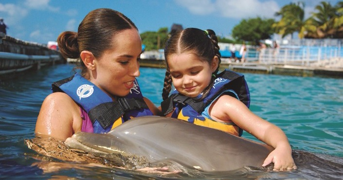 Dolphin Swim Adventure and Stingray City