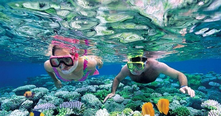 Private Cancun Snorkeling