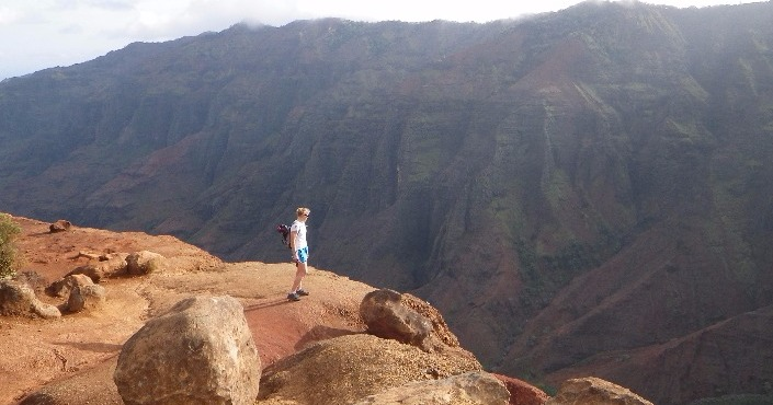 Waimea Canyon Tour