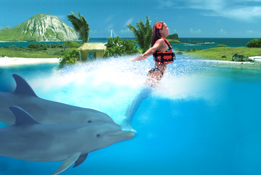 Dolphin Encounter in Cozumel