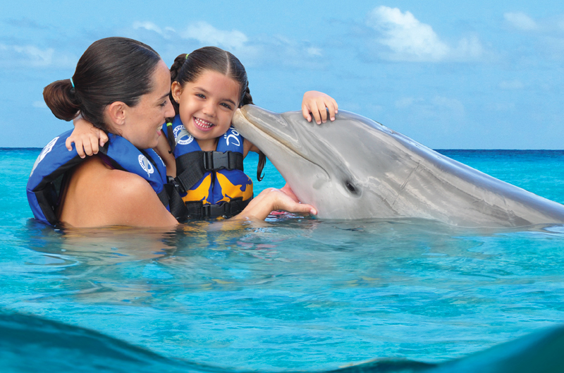 Dolphin Encounter - Tulum Akumal