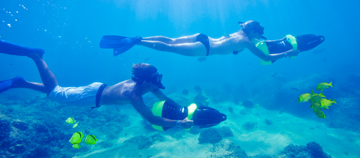Snorkel Tour and Sea Adventure in Cabos