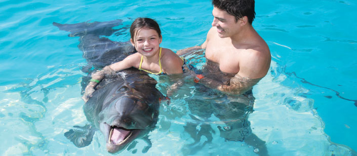 Dolphin Encounter in Puerto Vallarta