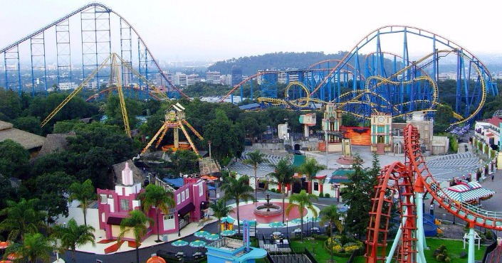 Six Flags +  Dolphin Encounter