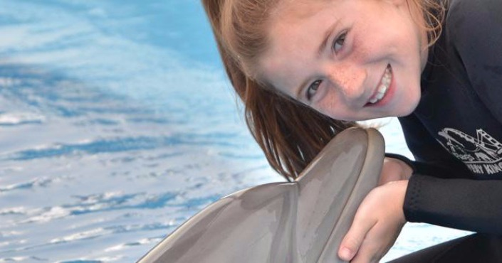 Dolphin Experience program at Six Flags