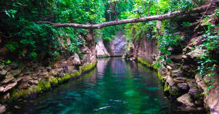 Discovery Tour to Xcaret Park - Cancun/Riviera Maya